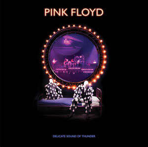 PINK FLOYD – DELICATE SOUND OF THUNDER (BLRY)