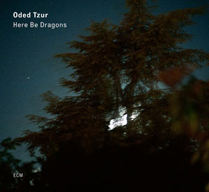 TZUR, ODED – HERE BE DRAGONS (LP)