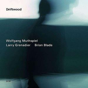 MUTHSPIEL, WOLFGANG/LARRY – DRIFTWOOD (CD)