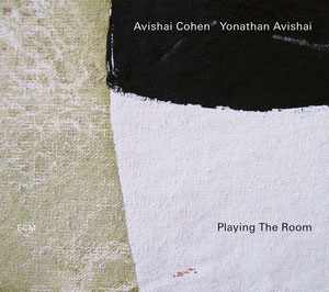 COHEN, AVISHAI/YONATHAN A – PLAYING THE ROOM (LP)