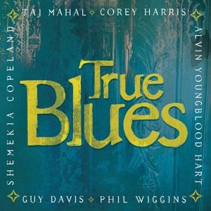 VARIOUS ARTISTS – TRUE BLUES (CD)