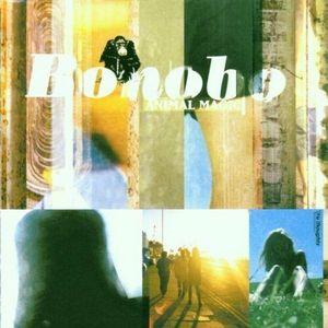 BONOBO – ANIMAL MAGIC (CD)
