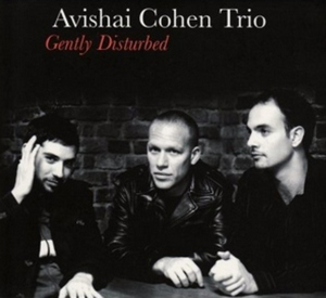 COHEN, AVISHAI – GENTLY DISTURBED (LP)