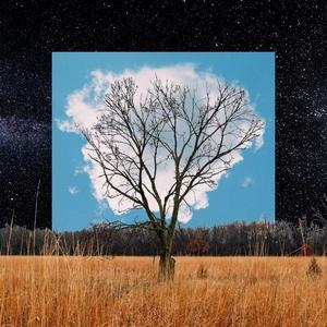 FINK – BLOOM INNOCENT (LP)