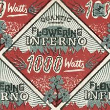 FLOWERING INFERNO – 1000 WATTS (CD)