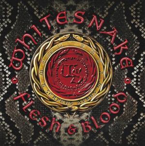 WHITESNAKE – FLESH & BLOOD (CD)